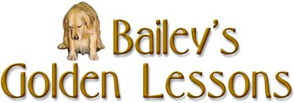 Bailey's Golden Lessons