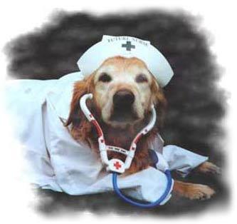Libby as Nurse!