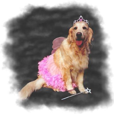 Meggie as a Fairy Princess!