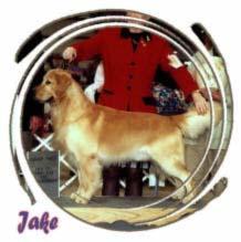 Jake winning