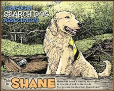 Coloring Book picture of Shane